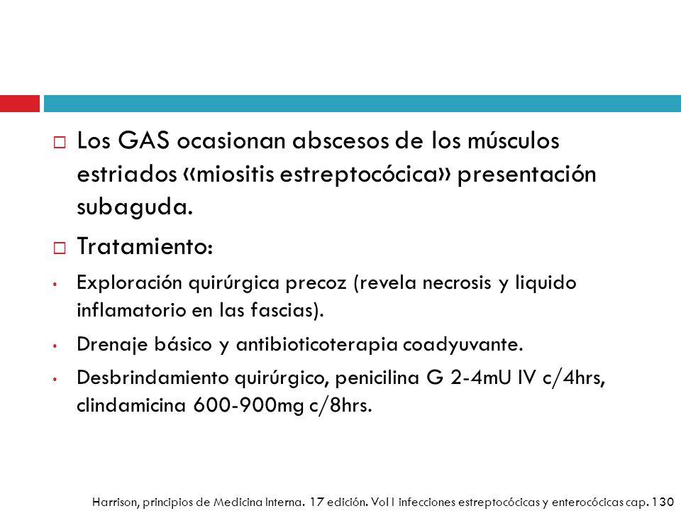 Los GAS ocasionan abscesos de los músculos estriados «miositis estreptocócica» presentación subaguda.