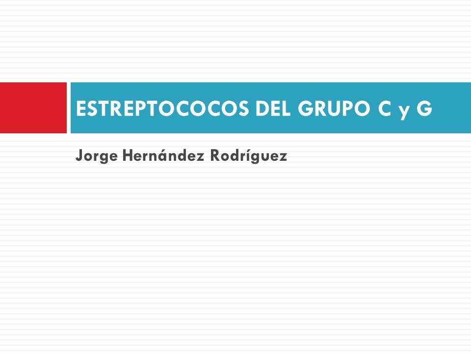ESTREPTOCOCOS DEL GRUPO C y G