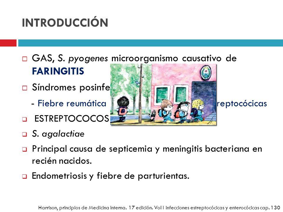 INTRODUCCIÓN GAS, S. pyogenes microorganismo causativo de FARINGITIS