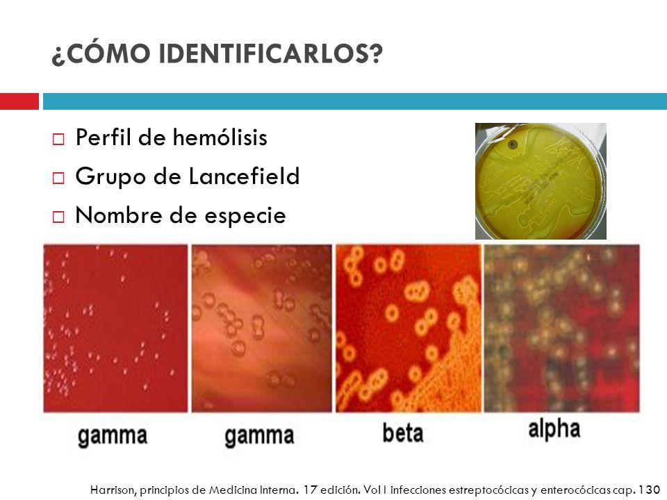 ¿CÓMO IDENTIFICARLOS Perfil de hemólisis Grupo de Lancefield