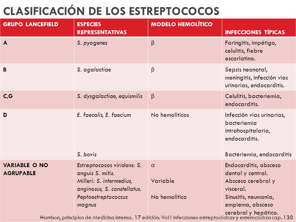 CLASIFICACIÓN DE LOS ESTREPTOCOCOS