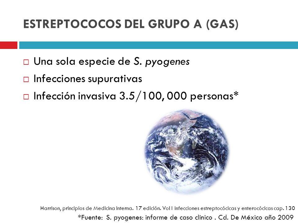ESTREPTOCOCOS DEL GRUPO A (GAS)