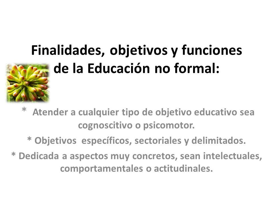 Finalidades, objetivos y funciones de la Educación no formal: