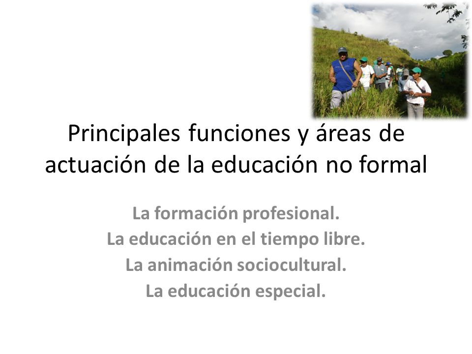 Principales funciones y áreas de actuación de la educación no formal