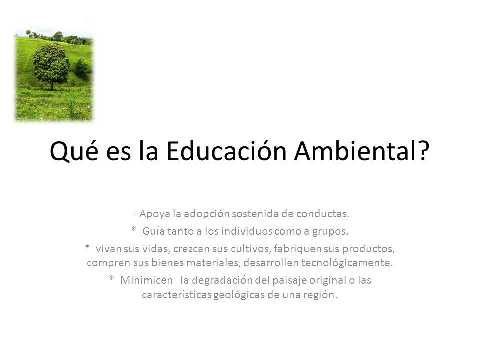 Qué es la Educación Ambiental