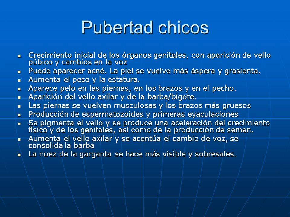 Pubertad chicos Crecimiento inicial de los órganos genitales, con aparición de vello púbico y cambios en la voz.