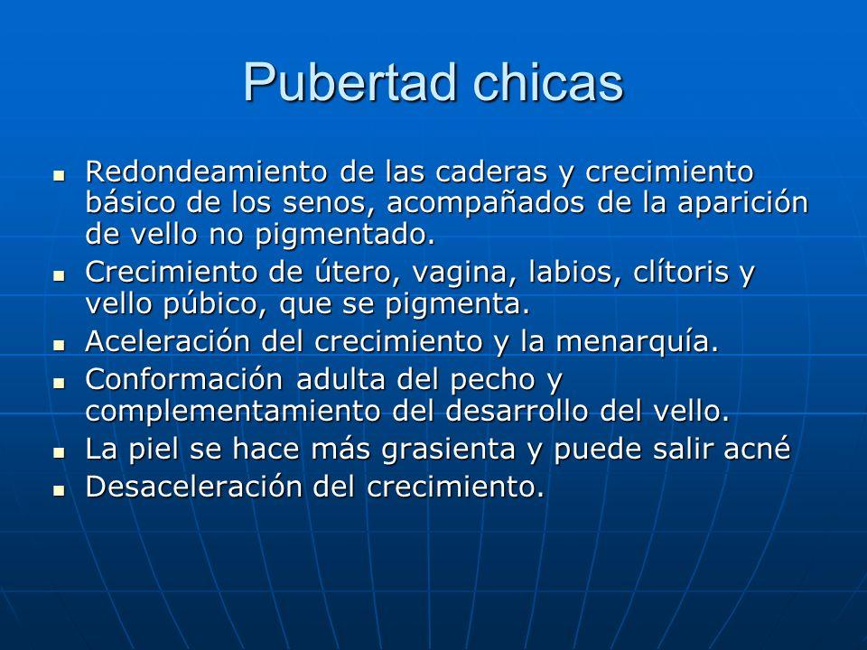 Pubertad chicas Redondeamiento de las caderas y crecimiento básico de los senos, acompañados de la aparición de vello no pigmentado.