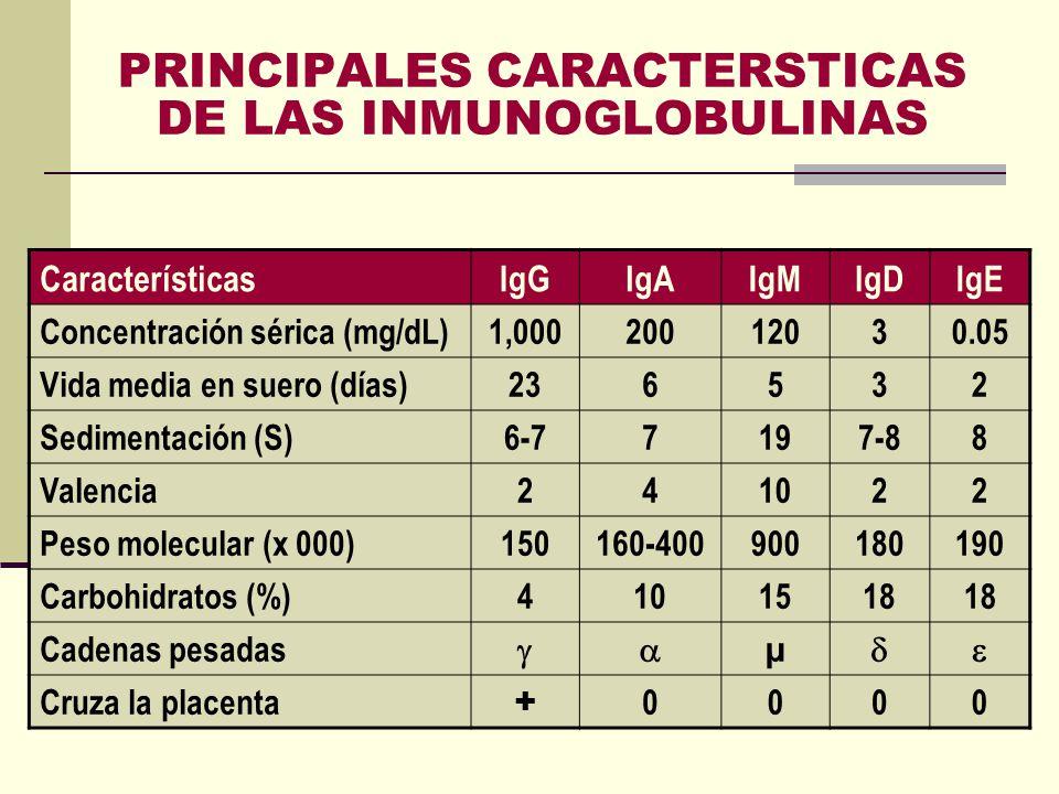 PRINCIPALES CARACTERSTICAS DE LAS INMUNOGLOBULINAS