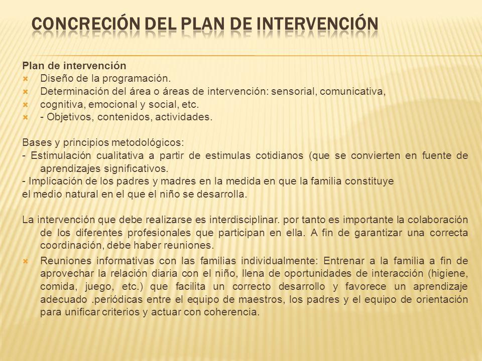 Concreción del plan de intervención