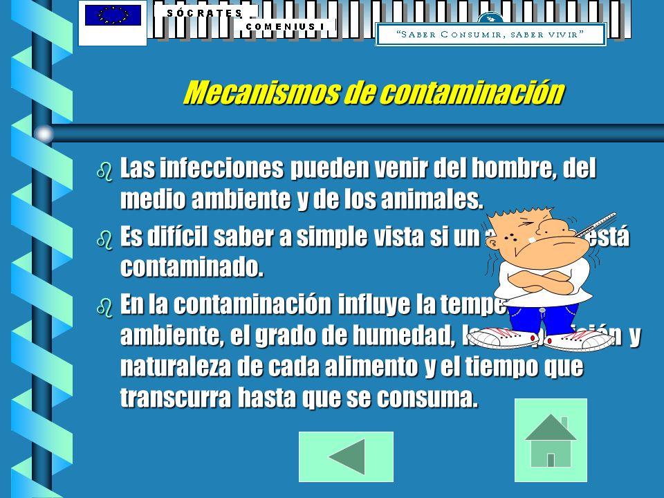 Mecanismos de contaminación