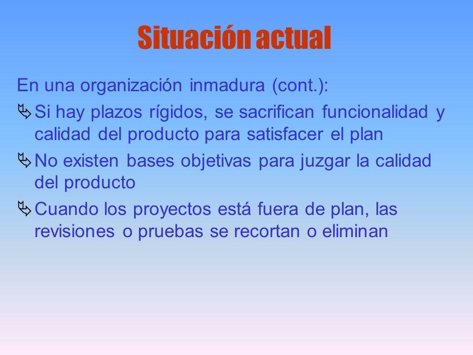 Situación actual En una organización inmadura (cont.):