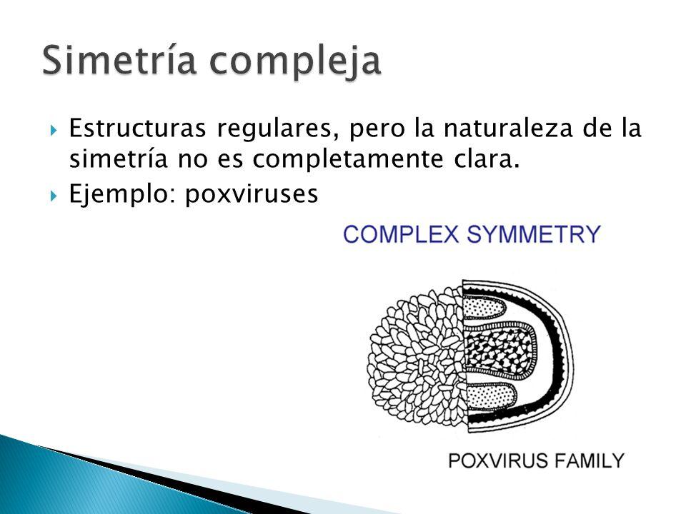 Simetría compleja Estructuras regulares, pero la naturaleza de la simetría no es completamente clara.