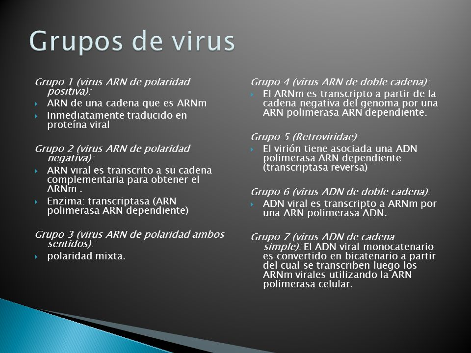 Grupos de virus Grupo 1 (virus ARN de polaridad positiva):