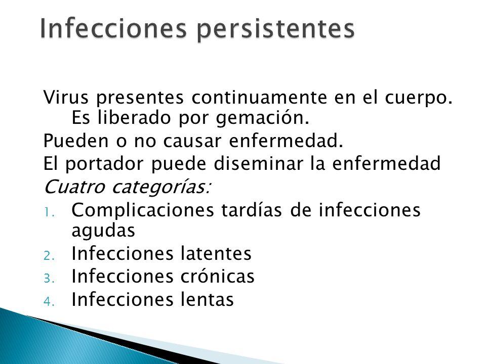 Infecciones persistentes