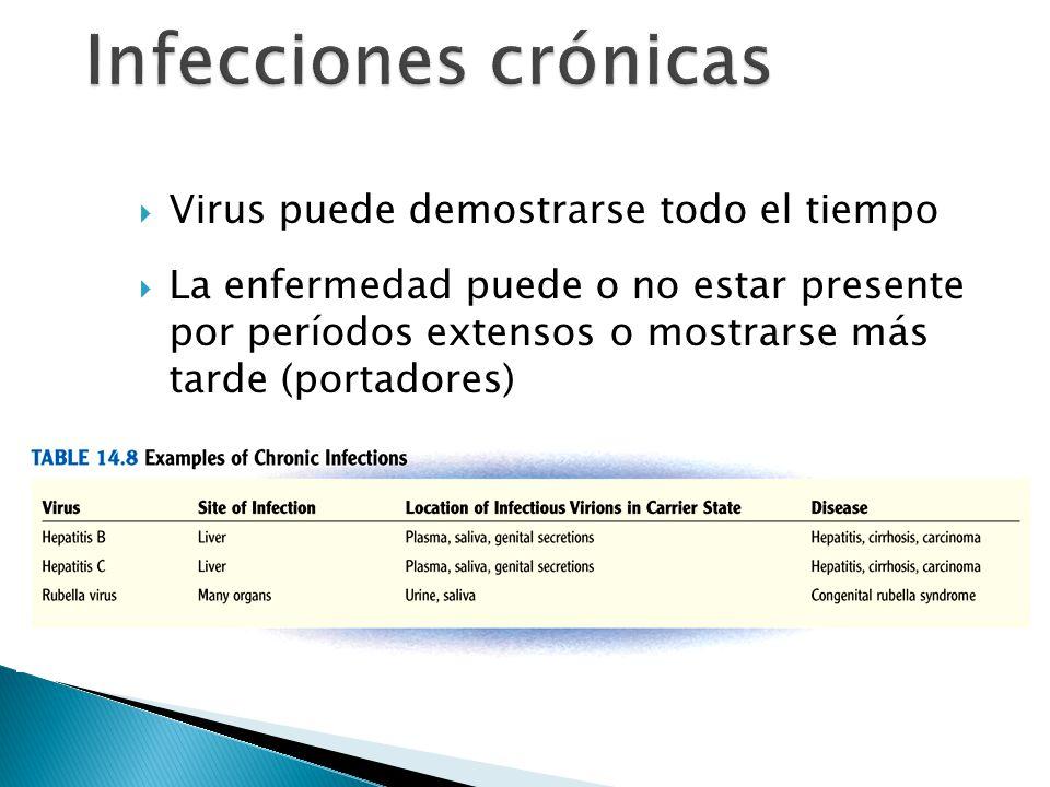 Infecciones crónicas Virus puede demostrarse todo el tiempo