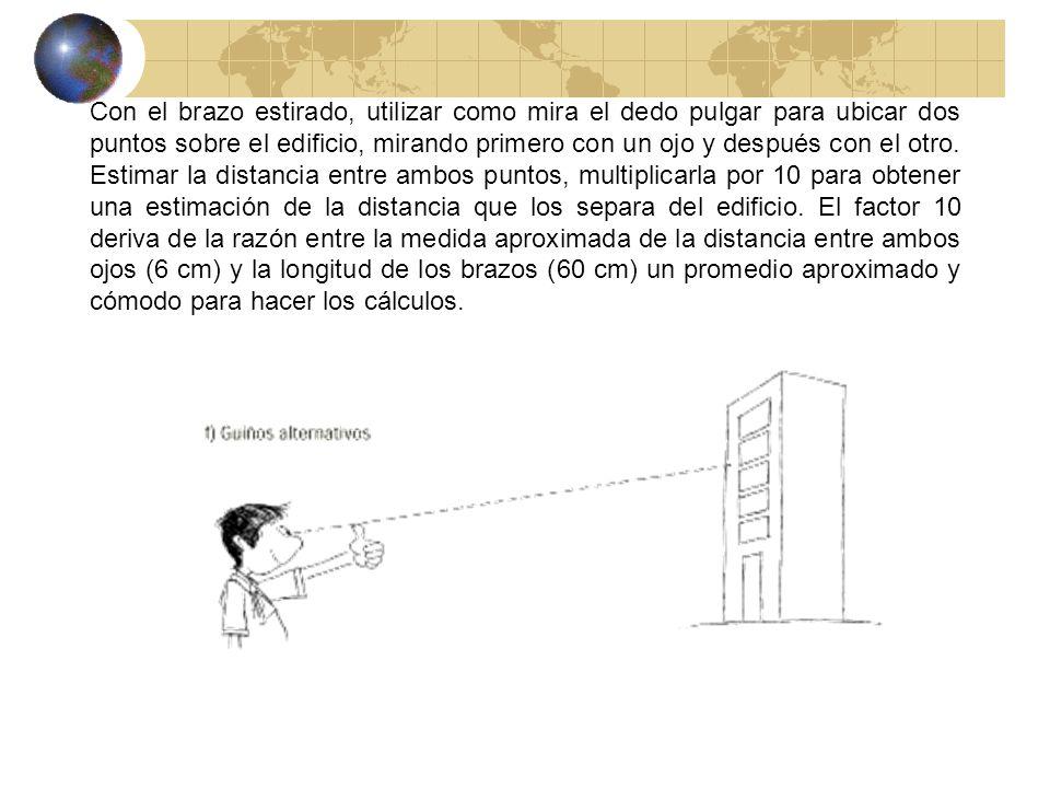 Con el brazo estirado, utilizar como mira el dedo pulgar para ubicar dos puntos sobre el edificio, mirando primero con un ojo y después con el otro.