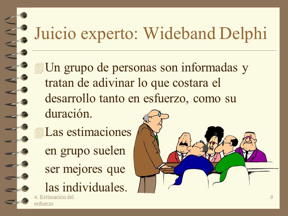 Juicio experto: Wideband Delphi