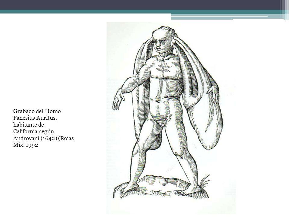 Grabado del Homo Fanesius Auritus, habitante de