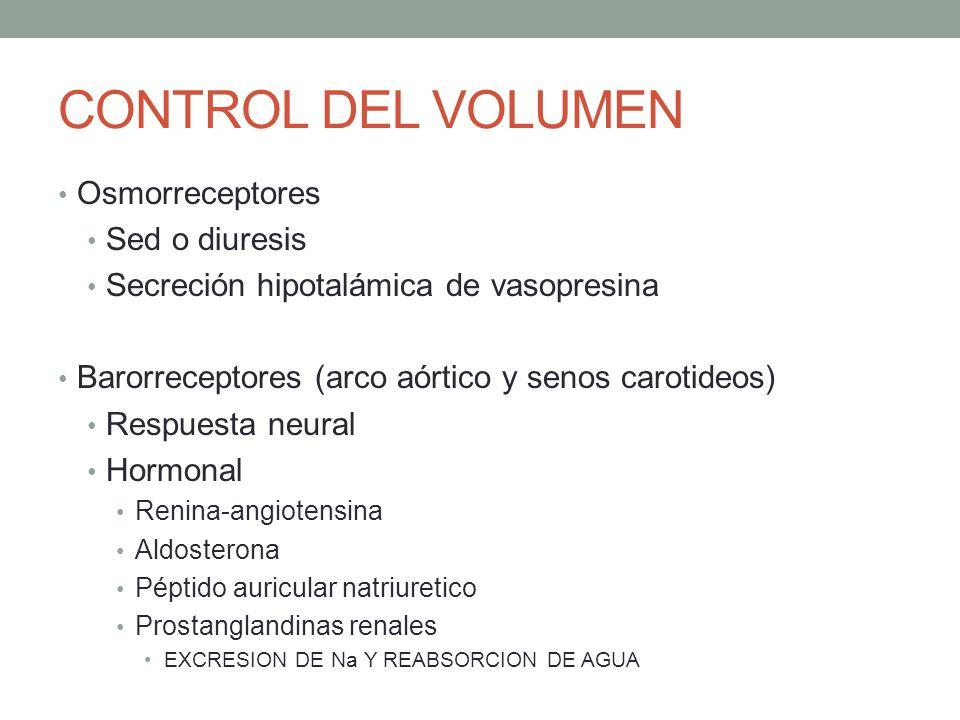 CONTROL DEL VOLUMEN Osmorreceptores Sed o diuresis