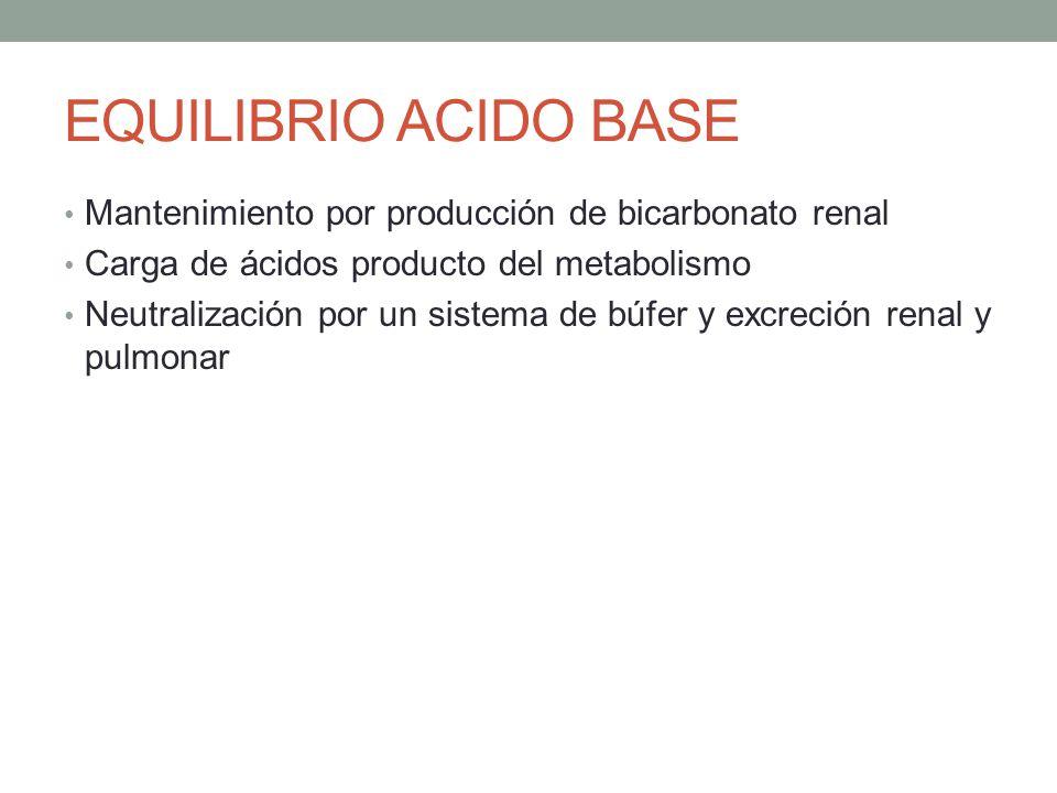 EQUILIBRIO ACIDO BASE Mantenimiento por producción de bicarbonato renal. Carga de ácidos producto del metabolismo.