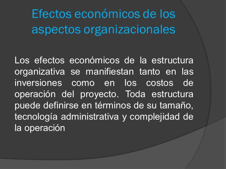 Efectos económicos de los aspectos organizacionales