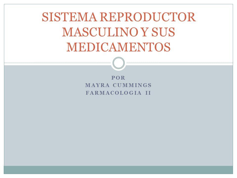 SISTEMA REPRODUCTOR MASCULINO Y SUS MEDICAMENTOS