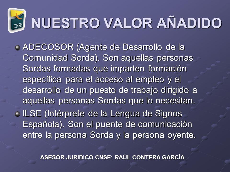 ASESOR JURIDICO CNSE: RAÚL CONTERA GARCÍA