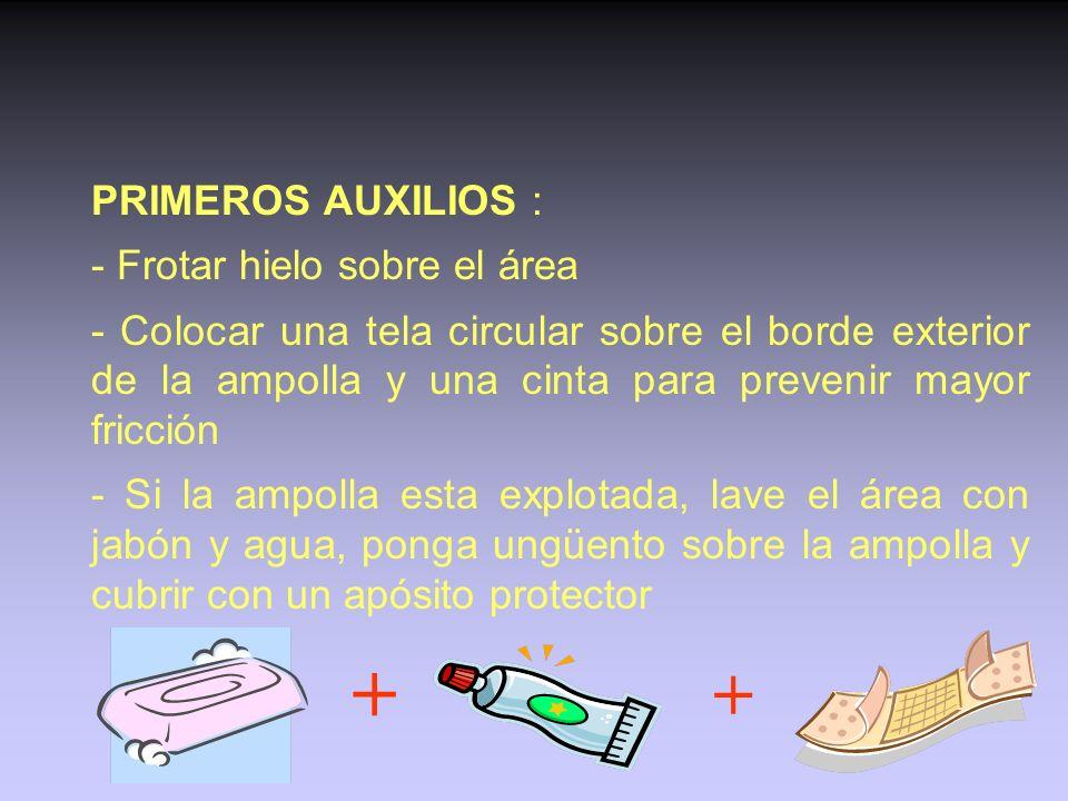 + + PRIMEROS AUXILIOS : - Frotar hielo sobre el área