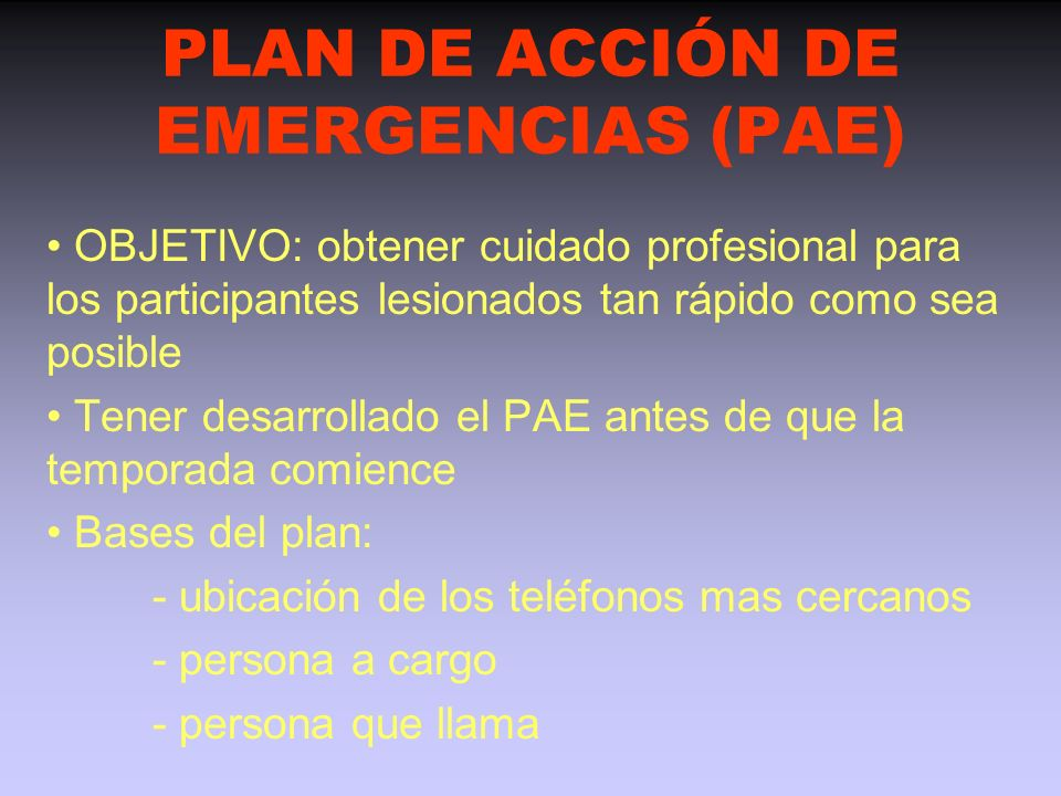 PLAN DE ACCIÓN DE EMERGENCIAS (PAE)