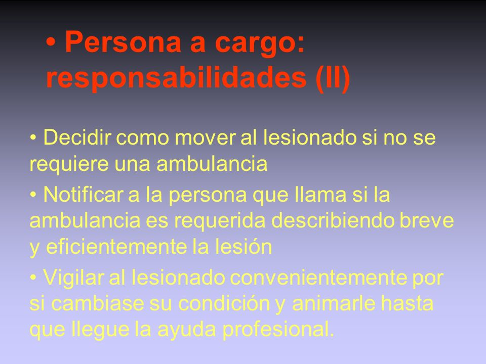 • Persona a cargo: responsabilidades (II)
