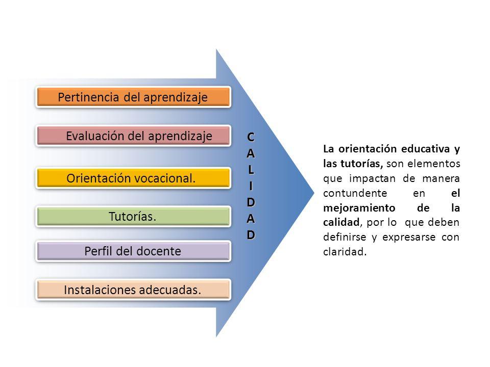 Pertinencia del aprendizaje