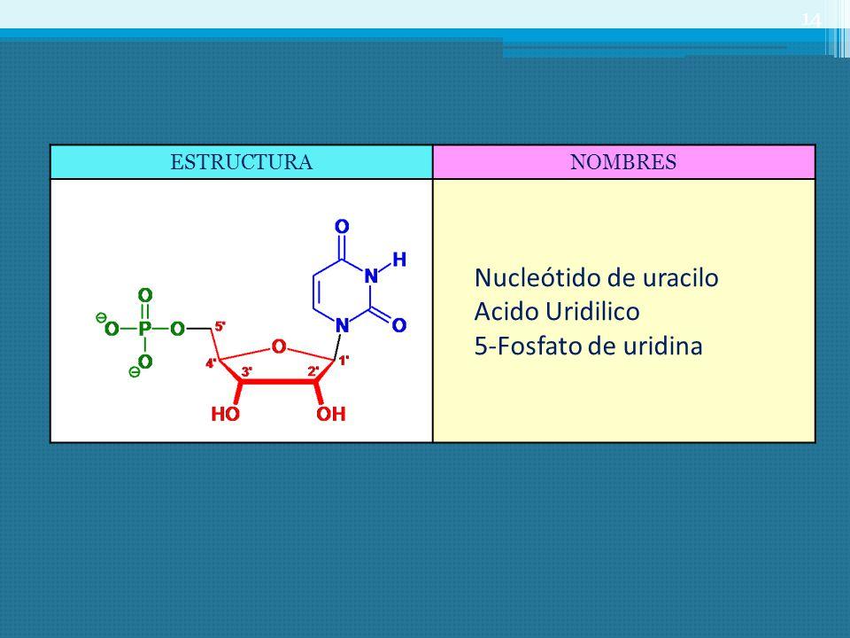 Nucleótido de uracilo Acido Uridilico 5-Fosfato de uridina ESTRUCTURA