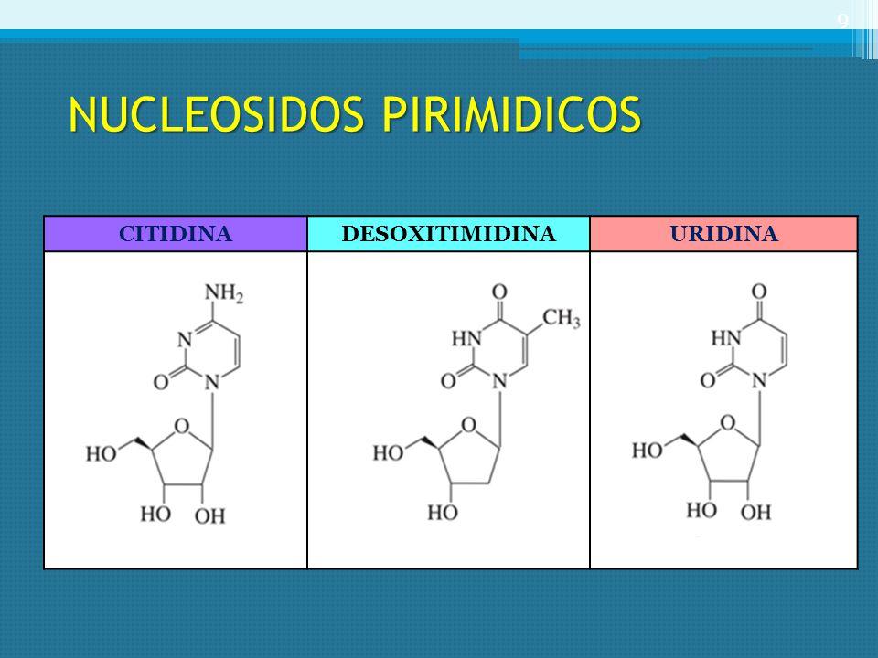 NUCLEOSIDOS PIRIMIDICOS