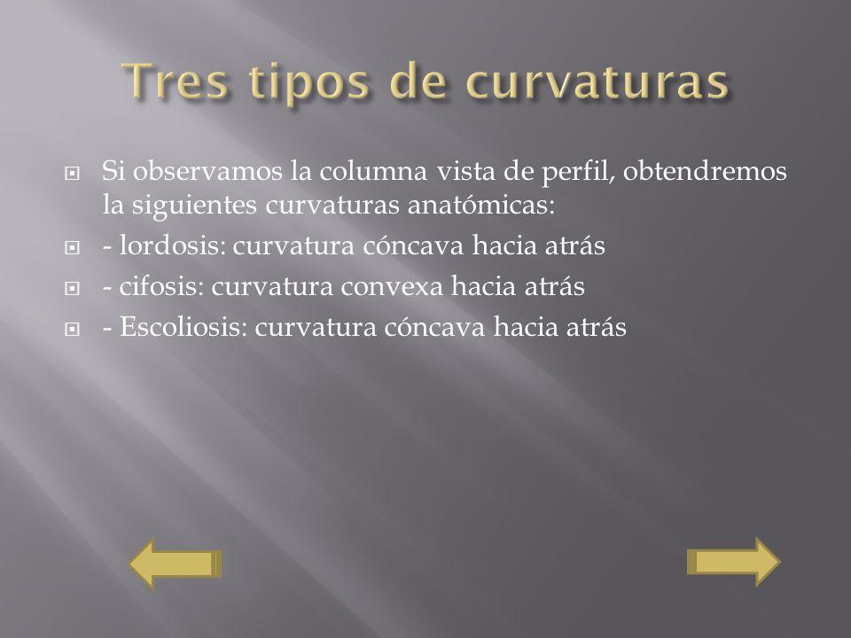 Tres tipos de curvaturas