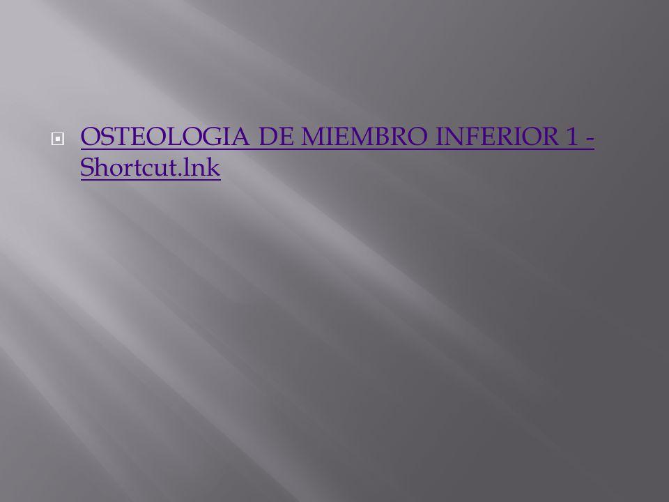 OSTEOLOGIA DE MIEMBRO INFERIOR 1 - Shortcut.lnk