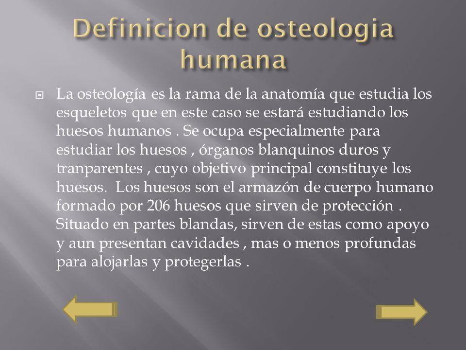 Definicion de osteologia humana