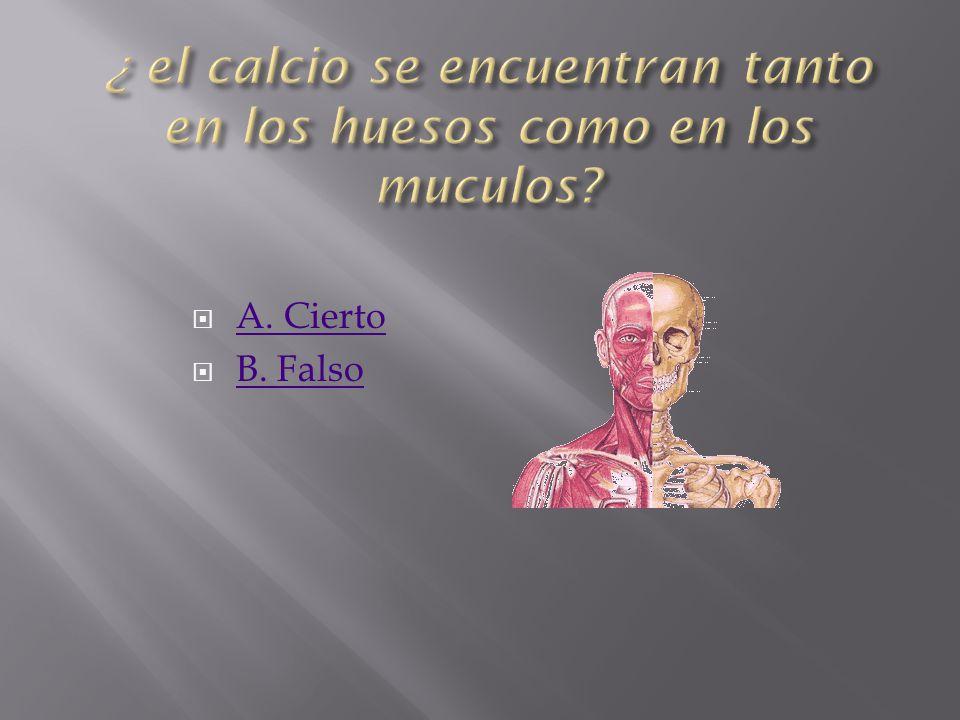 ¿ el calcio se encuentran tanto en los huesos como en los muculos
