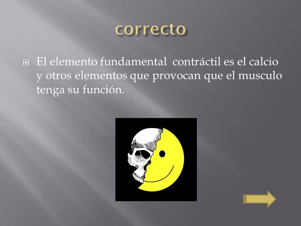 correcto El elemento fundamental contráctil es el calcio y otros elementos que provocan que el musculo tenga su función.