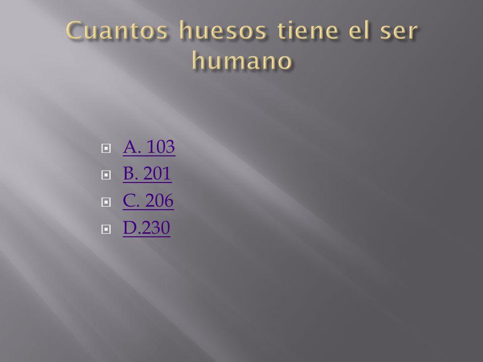 Cuantos huesos tiene el ser humano
