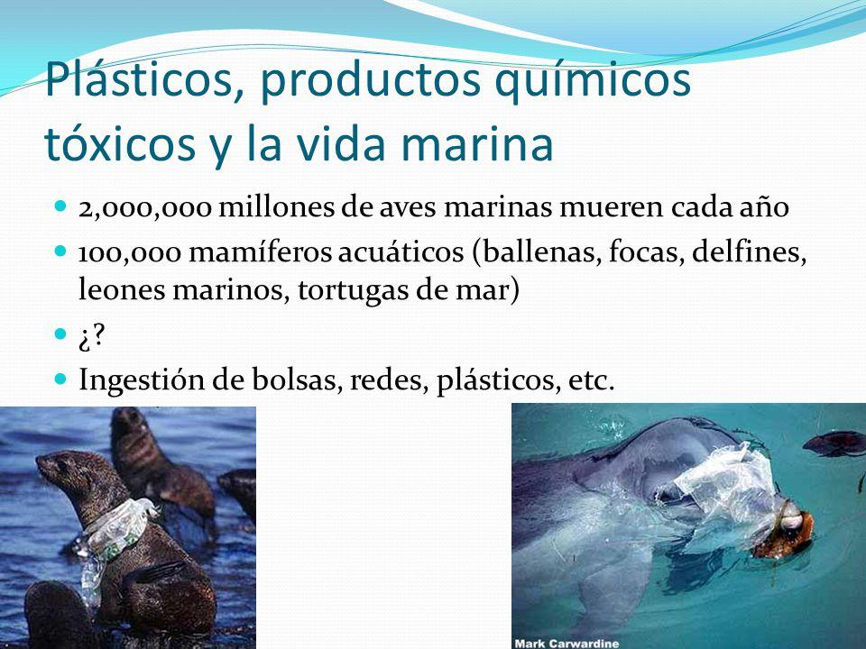 Plásticos, productos químicos tóxicos y la vida marina
