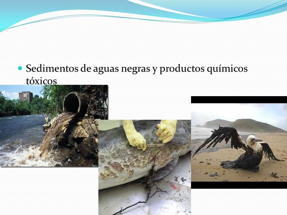 Sedimentos de aguas negras y productos químicos tóxicos