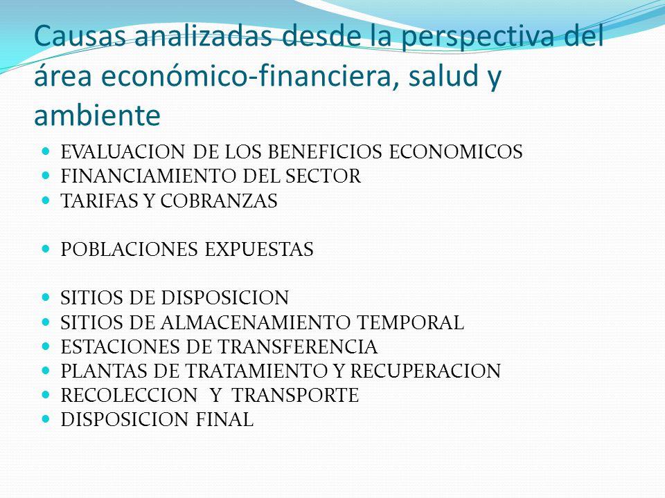 Causas analizadas desde la perspectiva del área económico-financiera, salud y ambiente