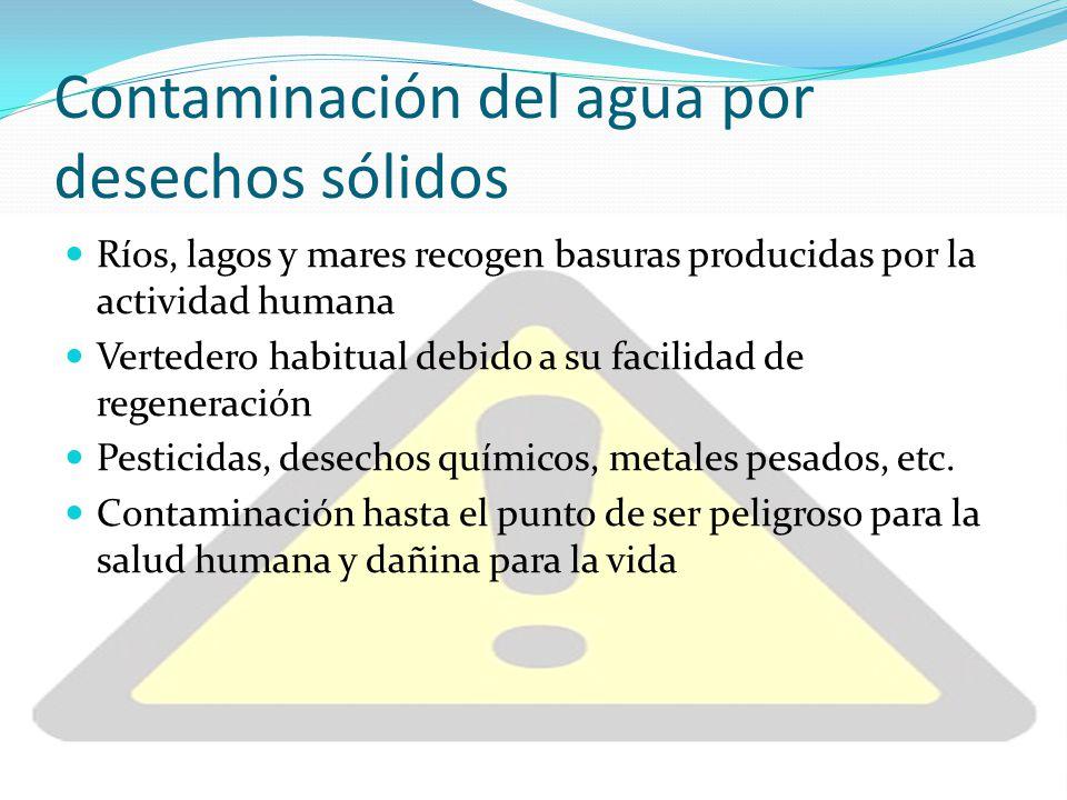 Contaminación del agua por desechos sólidos