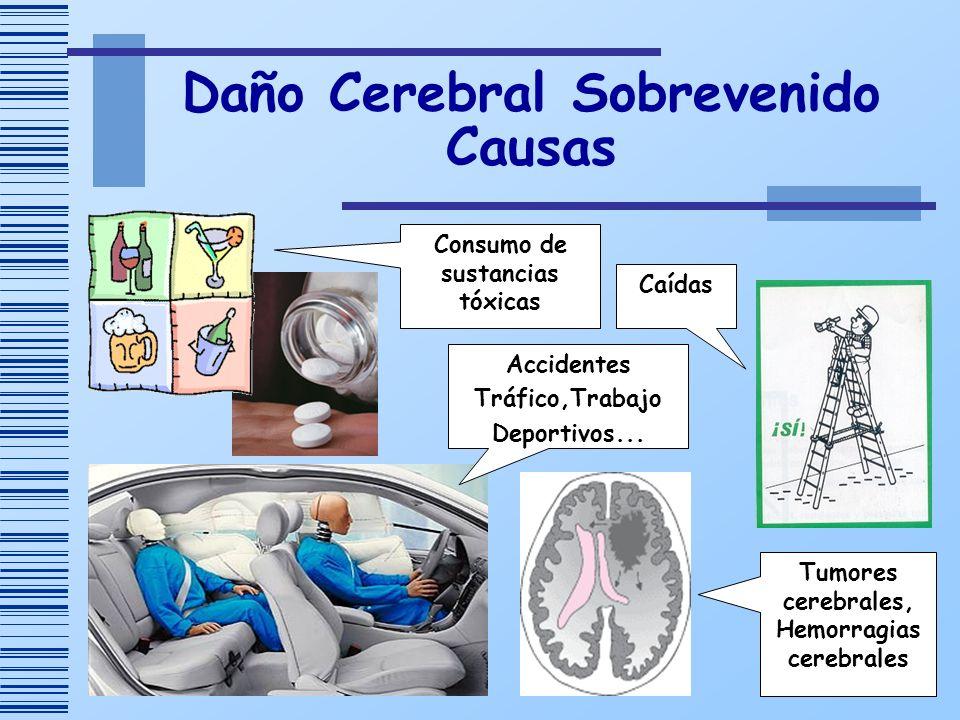 Daño Cerebral Sobrevenido Causas