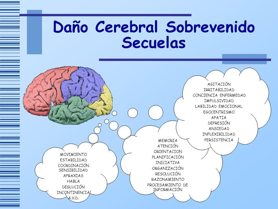 Daño Cerebral Sobrevenido Secuelas