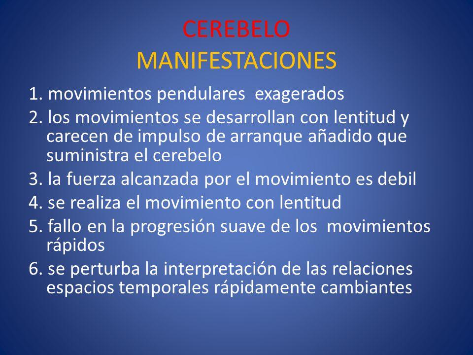 CEREBELO MANIFESTACIONES