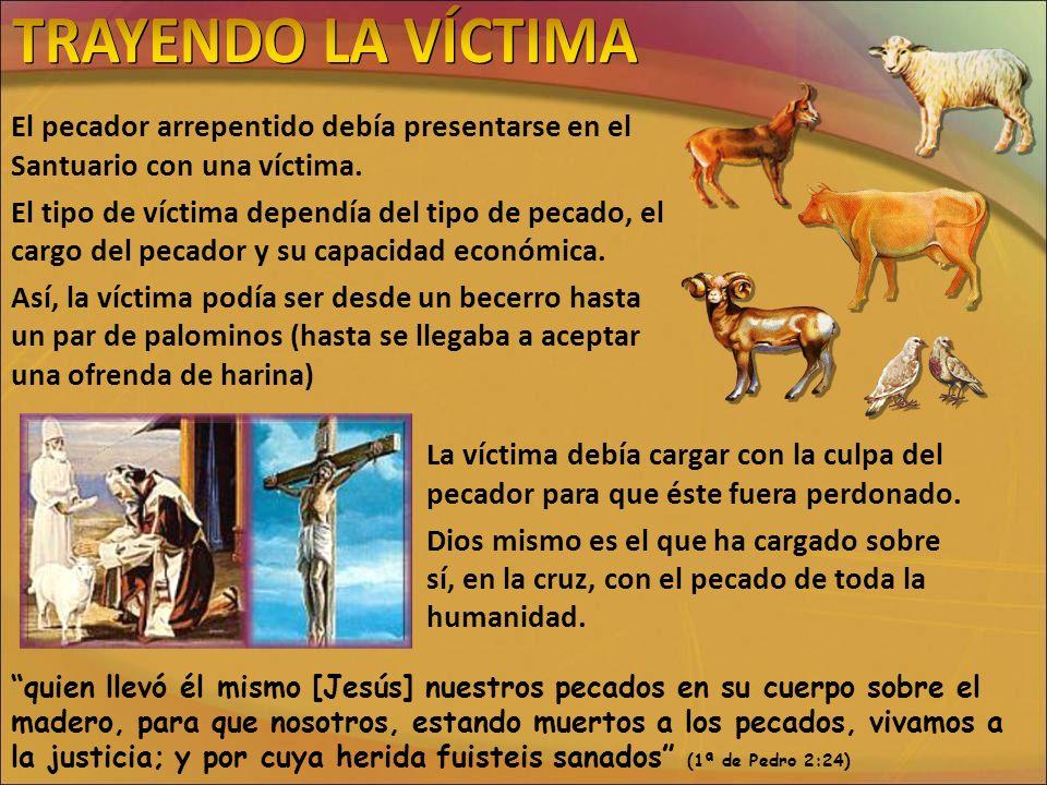 TRAYENDO LA VÍCTIMAEl pecador arrepentido debía presentarse en el Santuario con una víctima.