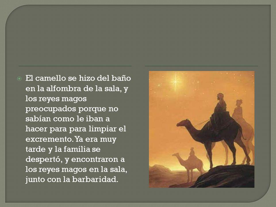 El camello se hizo del baño en la alfombra de la sala, y los reyes magos preocupados porque no sabían como le iban a hacer para para limpiar el excremento.