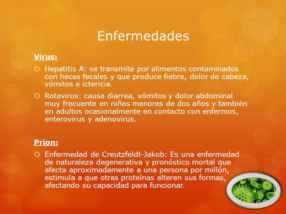 Enfermedades Virus: