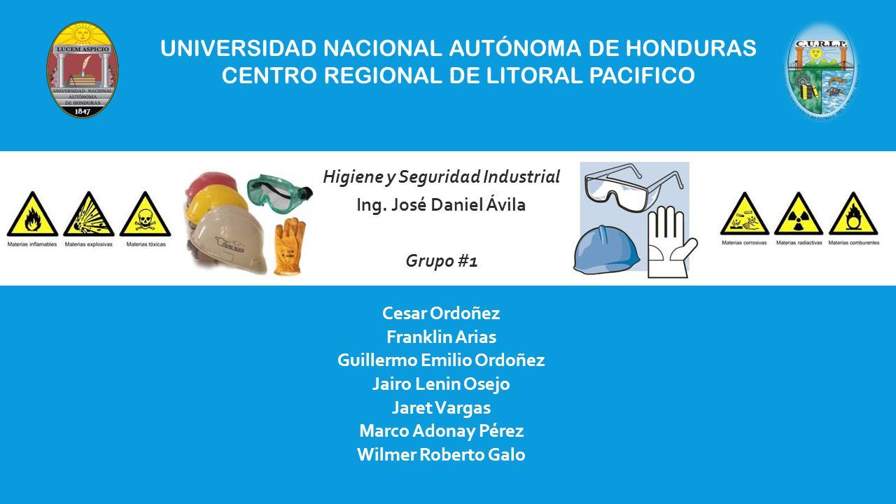 Higiene y Seguridad Industrial Guillermo Emilio Ordoñez